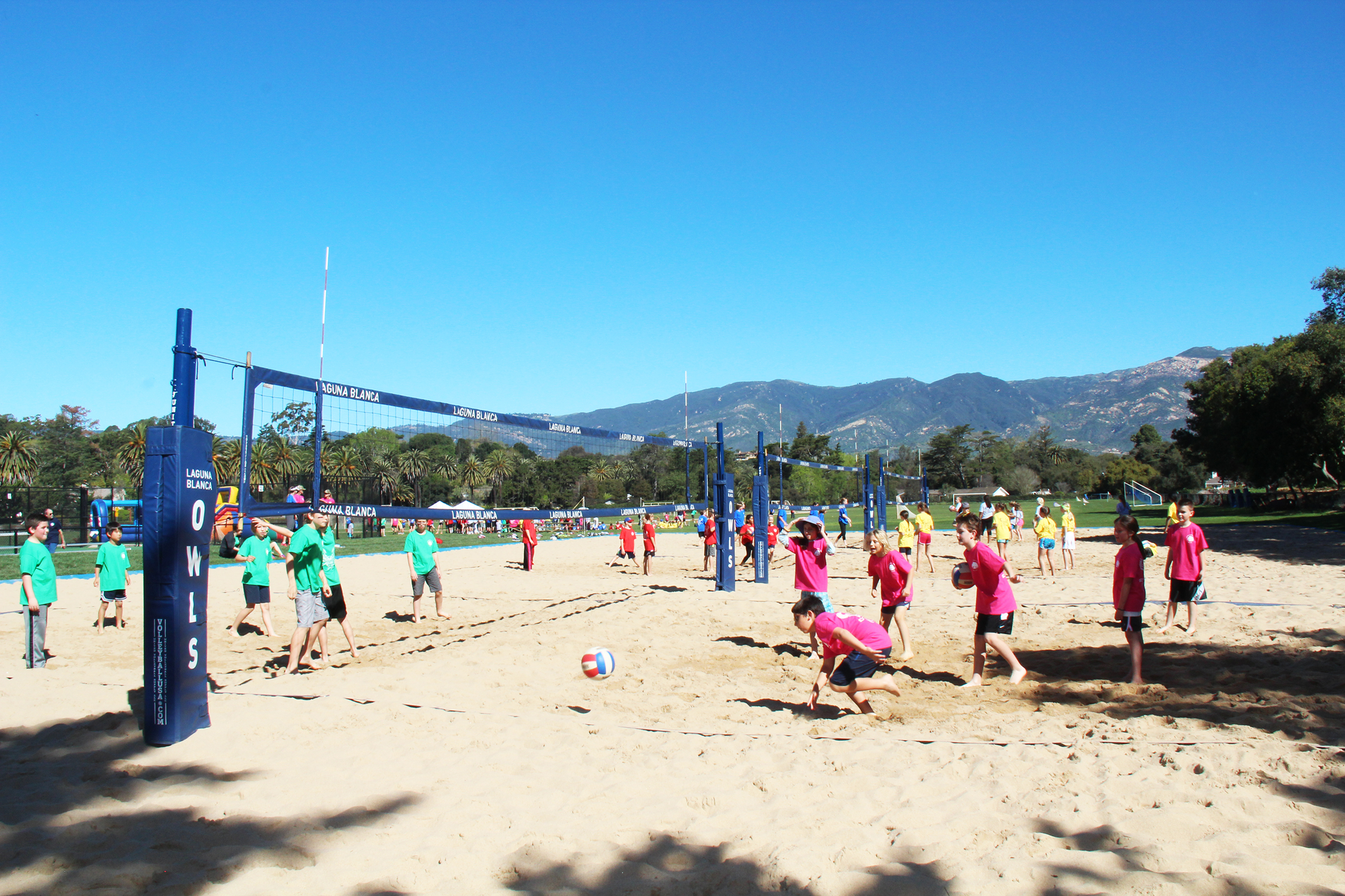 First Ever All-School Field Day Unites the Owl Community