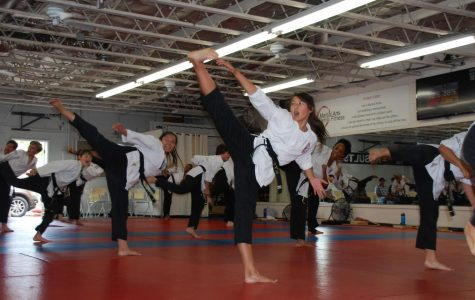 Independent Sports: Martial Arts