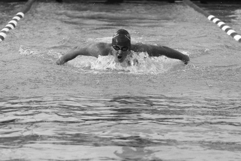 Swim Team Makes its Splash at CIF