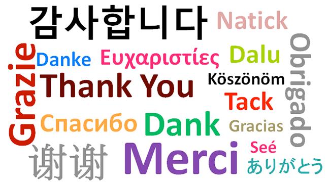 Languages: A Forgotten But Necessary Treasure
