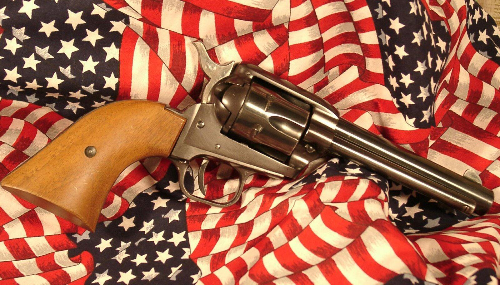 Reformation Over Prohibition: The Issue of Gun Rights
