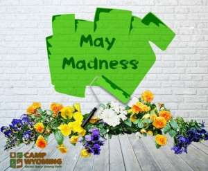 Volunteers Wanted for May Madness