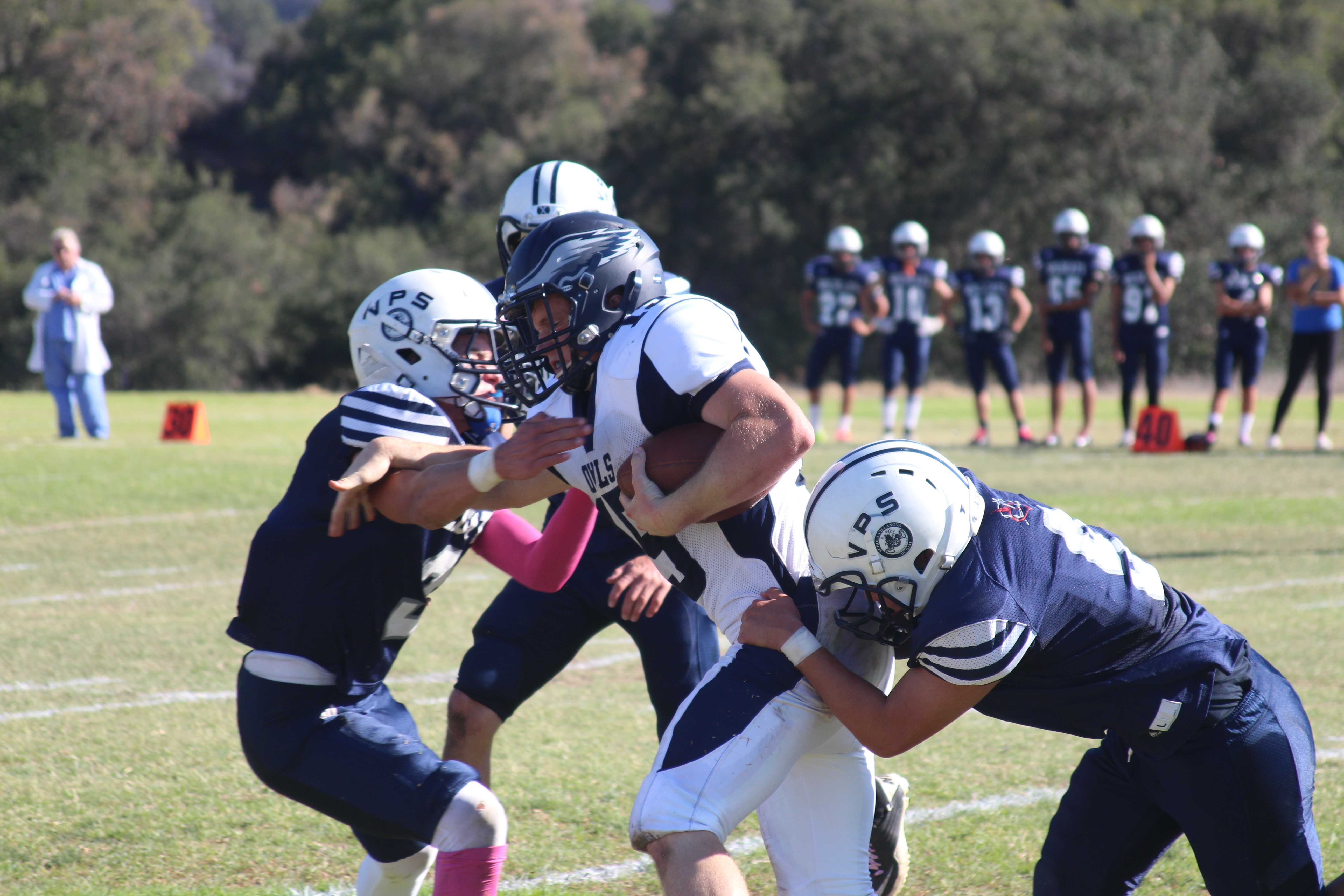 Undefeated Owls Make History on the Gridiron