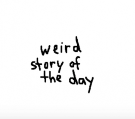 Weird Story of the Day: Episode 7