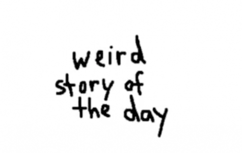 Weird Story of the Day: Episode 6