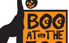 Boo at the Zoo 2018!