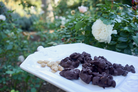 Chocolate Covered Almond Clusters